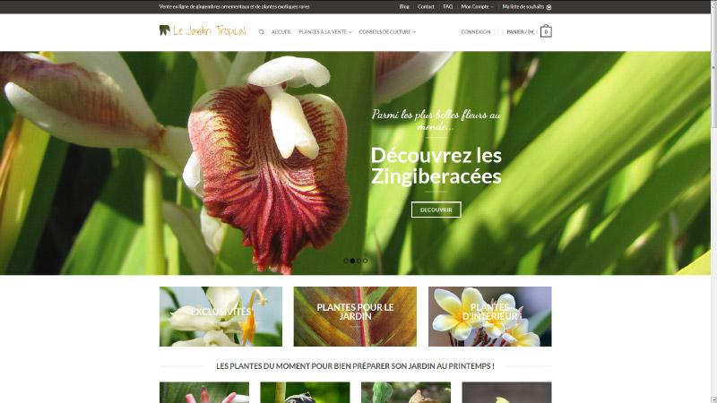 Le jardin tropical vente en ligne de plantes exotiques et for Vente en ligne plantes de jardin